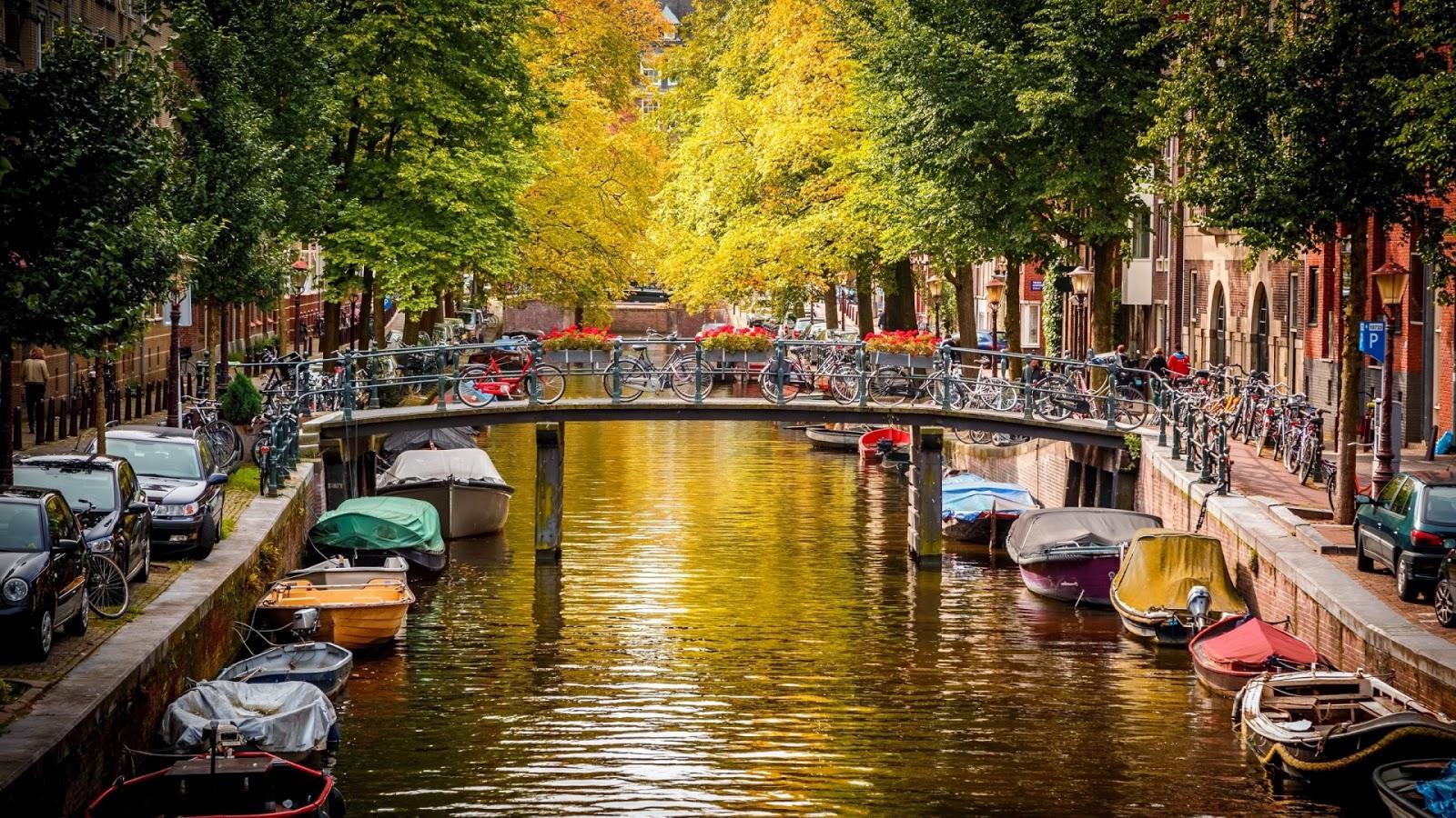 """סיור היכרות """"קלאסי"""" באמסטרדם"""