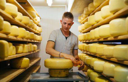 גבינות באמסטרדם