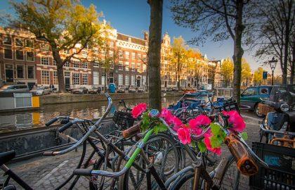 טיול למשפחות באמסטרדם