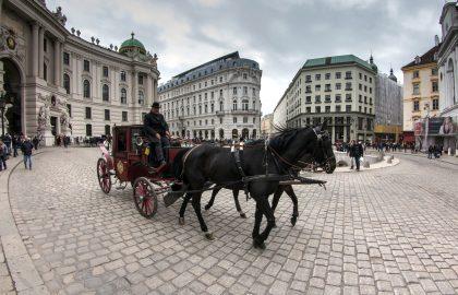 סיור בוינה – המרכז ההיסטורי